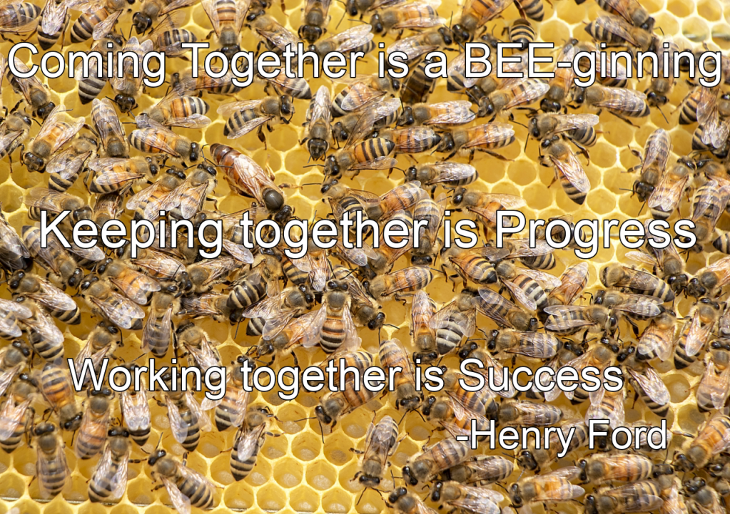 Motivational Bee Poster: Coming together is a beginning. Keeping together is progress. Working together is Success. -Henry Ford